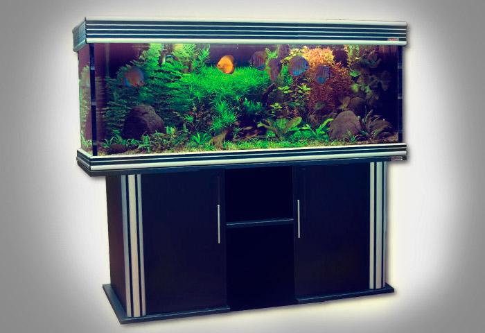 Oferta acuario wave-design